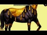 «Божественные и Необычные лошади » под музыку Спирит: Душа прерий - Слезайте с меня!. Picrolla